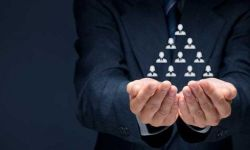 Fenomeno Network Marketing